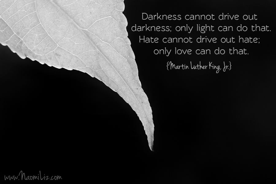 """Darkness cannot drive out darkness; only light can do that. Hate cannot drive out hate; only love can do that."" #quote #MLK #martinlutherkingjr www.naomiliz.com"